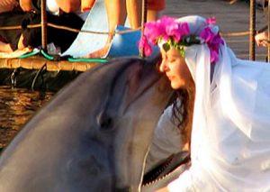 casada con su mascota, un delfin