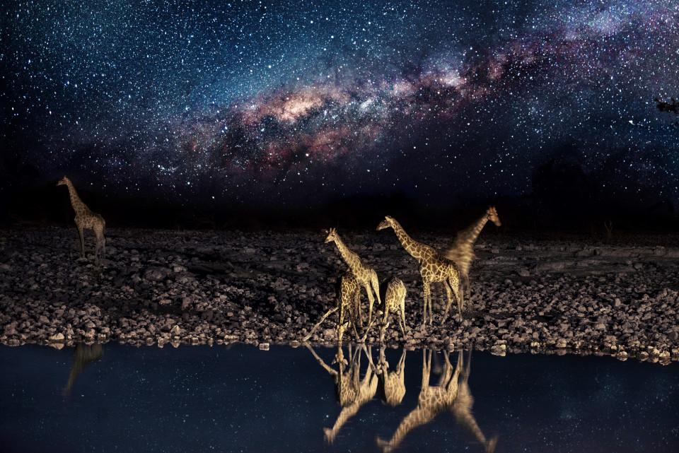 cielo estrellado desierto Namib