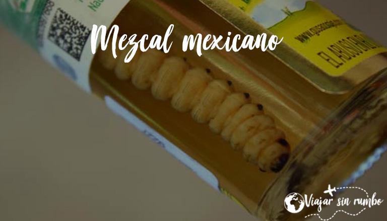 mezcal mexicano con gusano