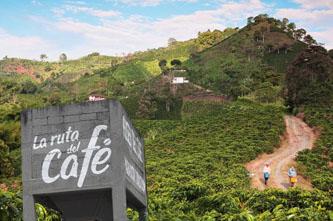 ruta del cafe colombia