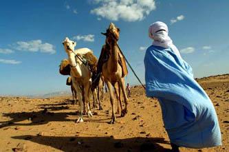 tribu bereber