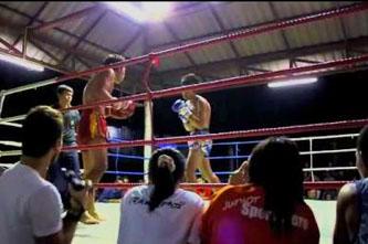 combate muay thai en koh tao