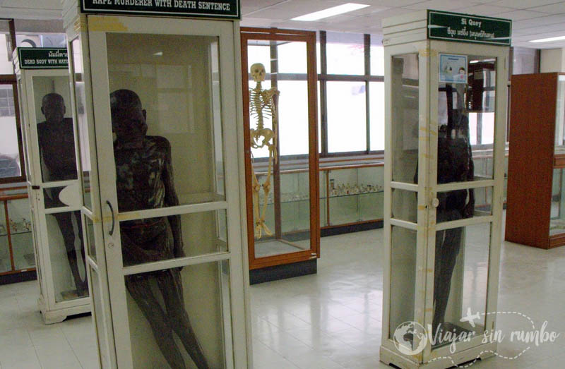 museo forense experiencias en tailandia