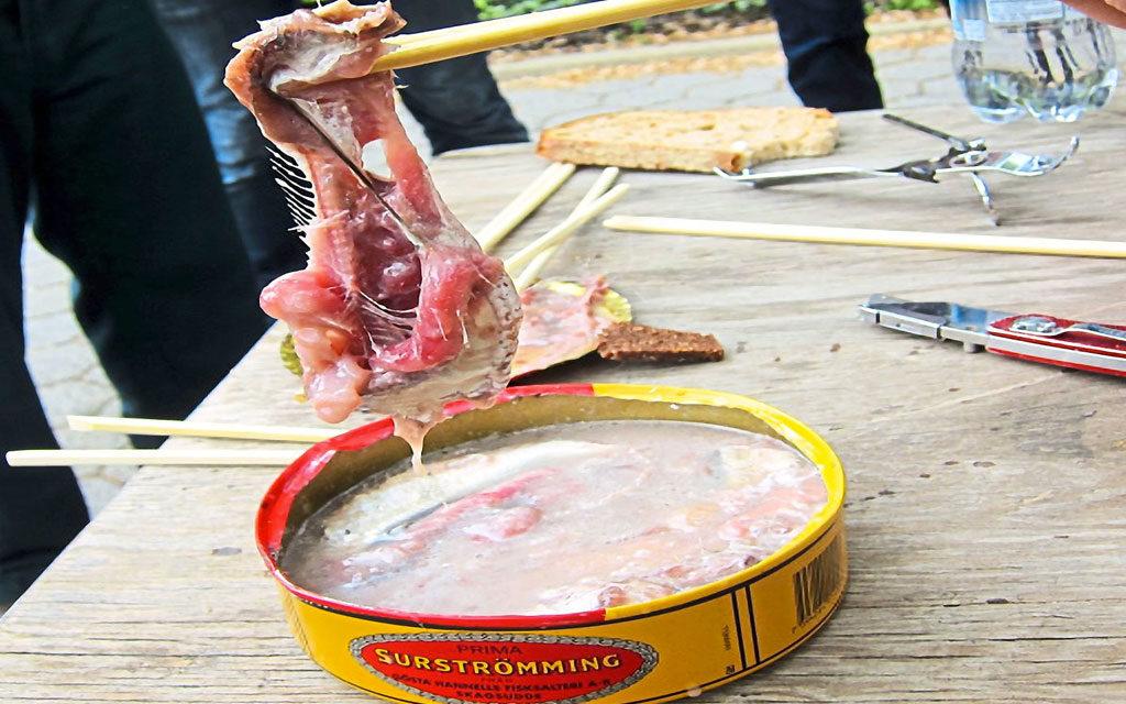 Surströmming Islandia