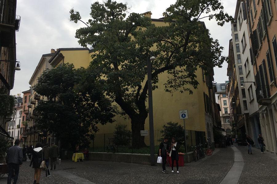 Barrio Brera Milán